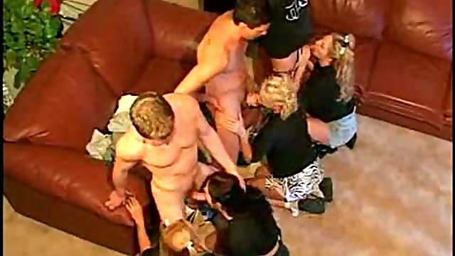 Cocksucking orgy with great coeds